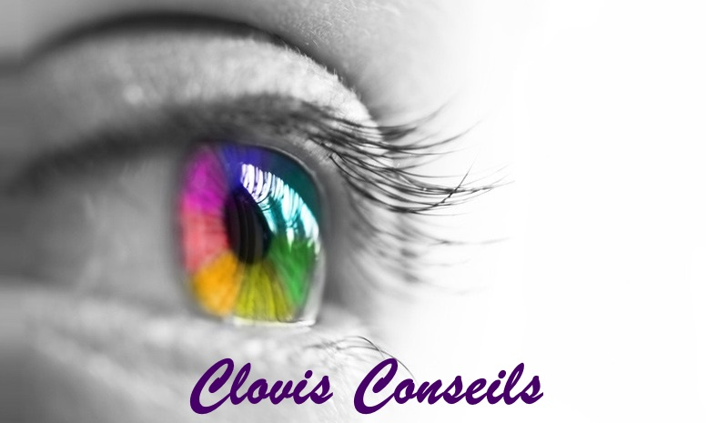 Clovis Conseils
