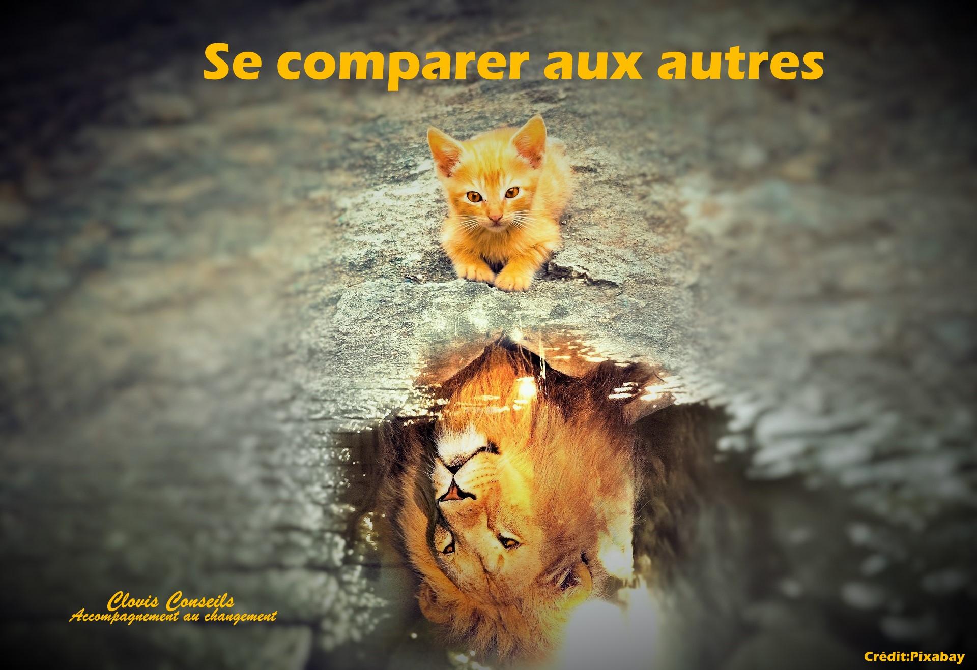 Se comparer aux autres